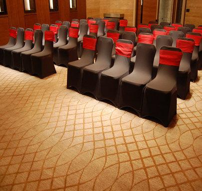 J W Marriott Aerocity-New Delhi Hotel carpets